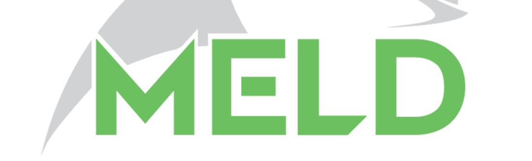 Aeroprobe MELD logo, Virginia's New River Valley