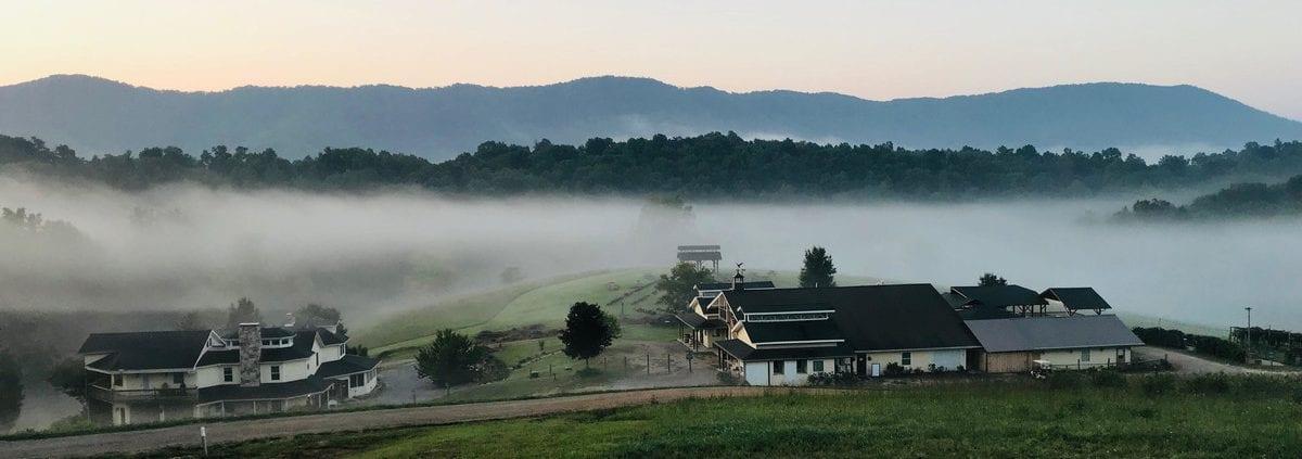 Beliveau Estate; winery; blacksburg; nrv; montgomery county