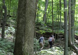Lesser Known NRV Hiking Trails Featured in The Roanoke Times