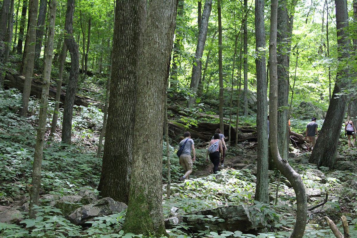 Outdoors in the NRV Hiking