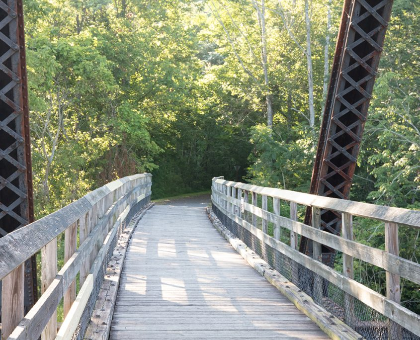 Outdoors in the NRV New River Trail