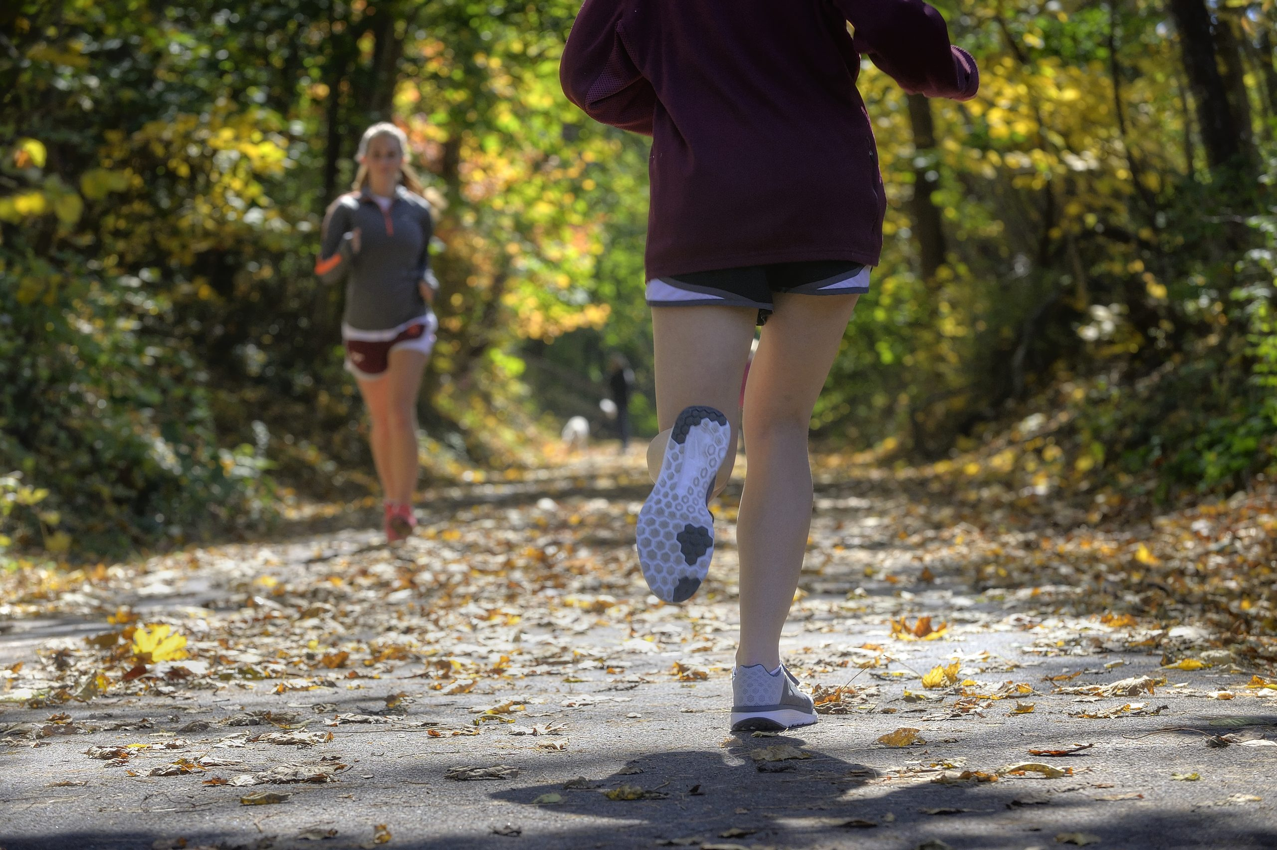 Virginia's New River Valley Trail Guide, Running, Hiking, Outdoors