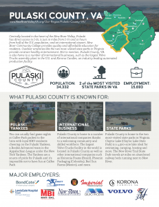 Pulaski County Community Profile 1 Pager Thumbnail